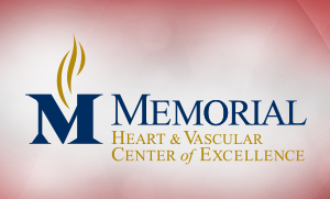 The Heart and Vascular Center of Excellence
